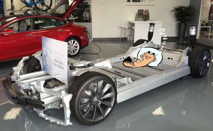 Tesla chassis, with a cat. (not included)