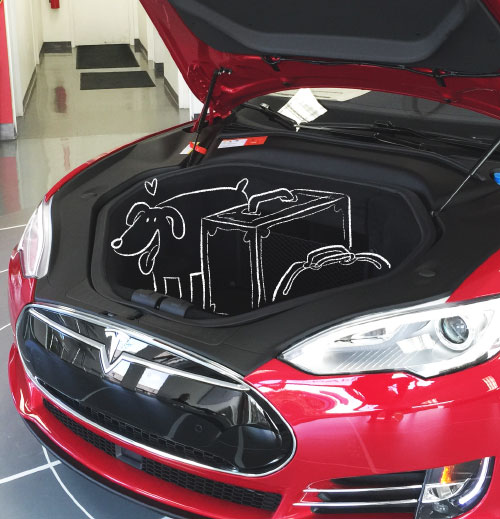 Laurel - Tesla test drive